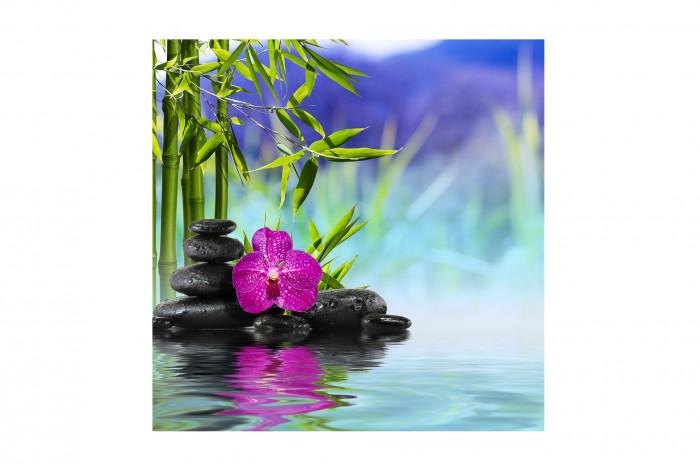 Модульная картина Бамбук на воде