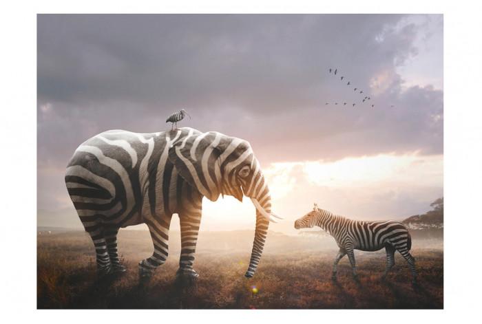 Одномодульная  картина-часы Слон и зебра
