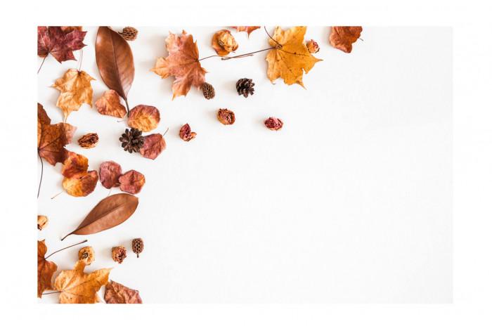 Картина Осенний стол